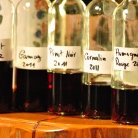 Tasting 2011s – Cave Caloz [March 2012](by BJ)